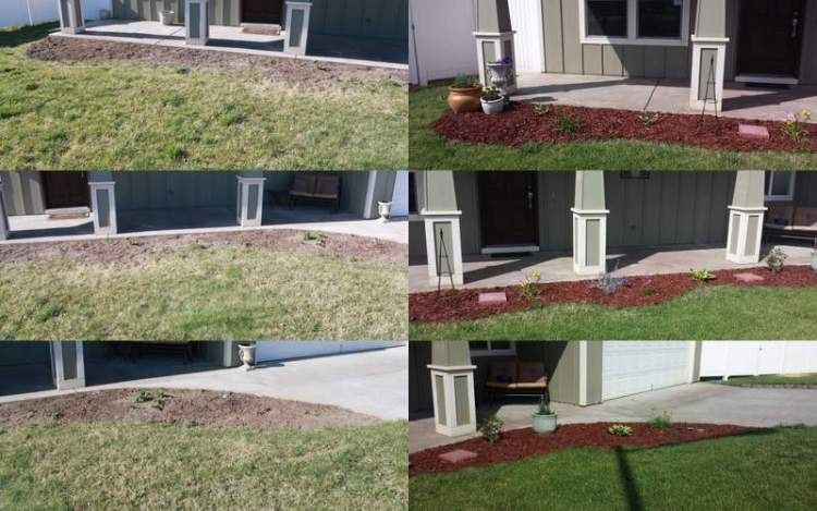 Flowerbeds phase 1